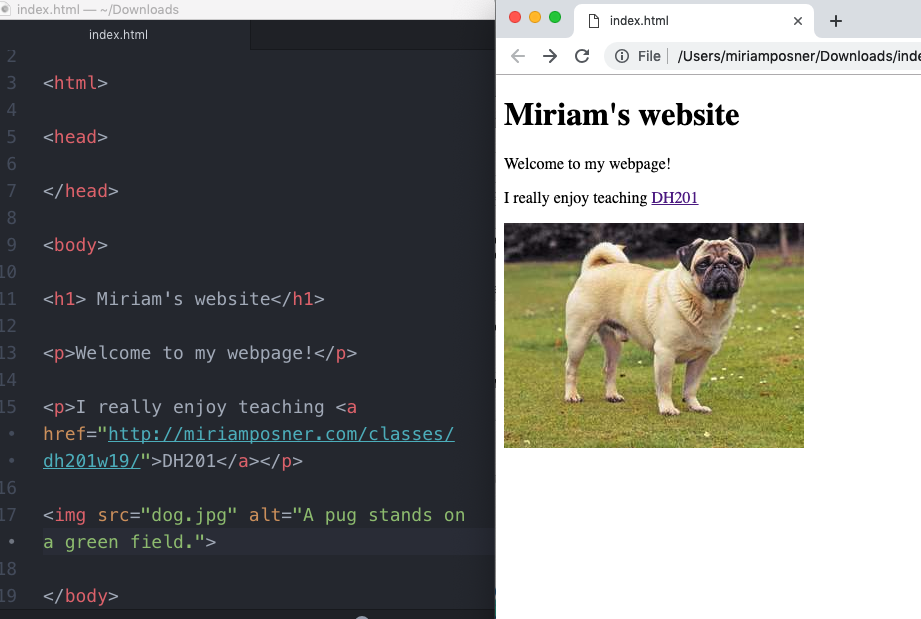 Image tag created in the code and displayed in the browser.